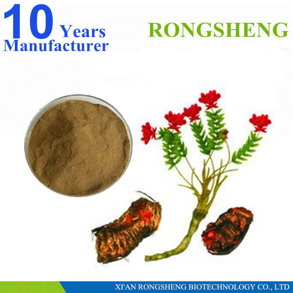 high quality natural salidroside rhodiola rosea powder extract