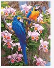2014 parrot new design beautifulf lowers oil painting by numbers
