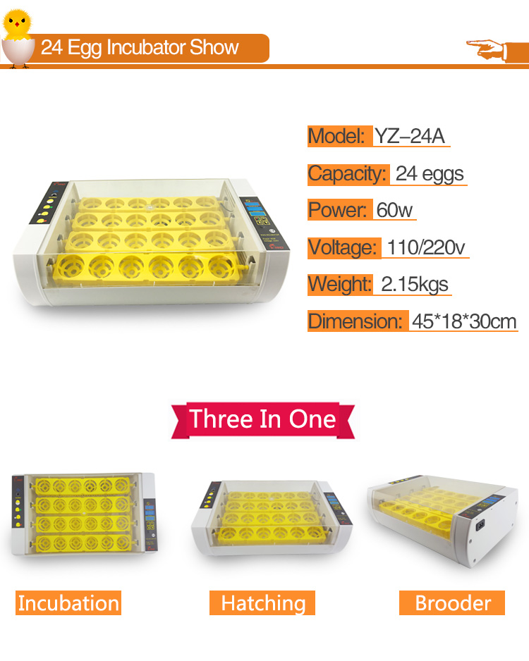 Holding 24 eggs quail/chicken/parrot/turkey automatic egg incubator brooder egg hatching machine price YZ-24A