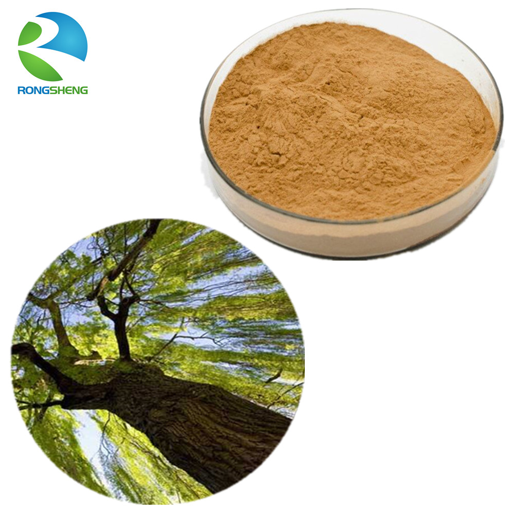 Hot Sale Natural White Willow Bark Extract