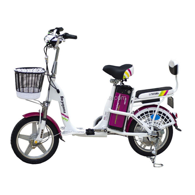 China Made Electric Bicycle 36V 250W Cheap Adult Electric Bike Motor