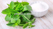 High quality stevia dry leaves extract 100% natural stevia tabletop sweetener