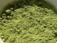 green cream instant tea powder
