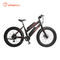 2019 hot selling 48v 500w 750w rear hub motor electric fat bike