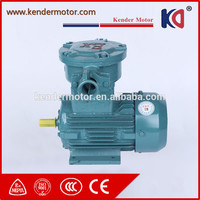 Long Life High Voltage 30KW Explosion Proof Three Phase Electrical Motor