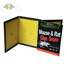 Eco-friendly Factory Direct Supply Black Cat Best Mouse Trap