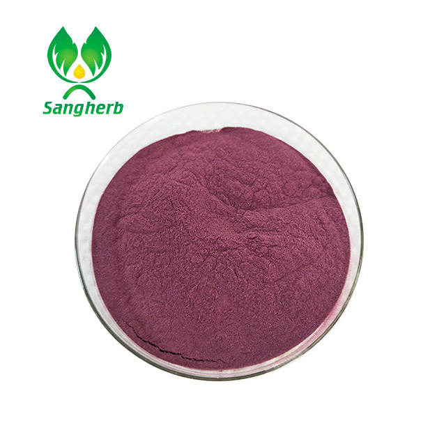 China manufacturer treat diarrhea natural acai berry extract with high quality