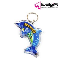 promotion photo insert acrylic keychain dolphin shape acrylic key chain