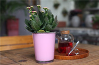 Hot selling popular indoor flower pot for living room with colors in different size