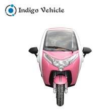 China 3 Wheel Hot Sale Electric Motorcycle Adult Tricycle