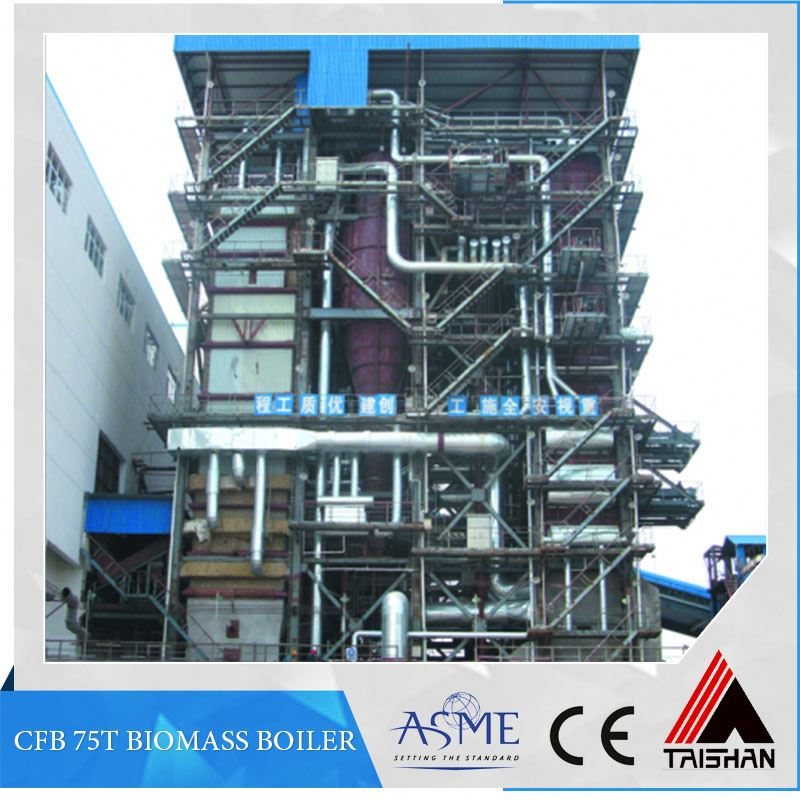 High Efficient Biomass Fired Hot Water Circulating Fluidized Bed Boiler Power Plant