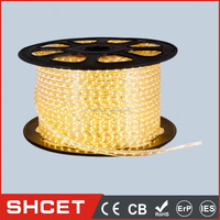 LED Strip/Bar Light 60LED High Lumens SMD 5050 20-22LM 14.4W 12V 5m IP44 For Homes Energy-saving