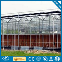 greenhouse plastic trays tunnel green house for sale electric inside shading system for greenhouse