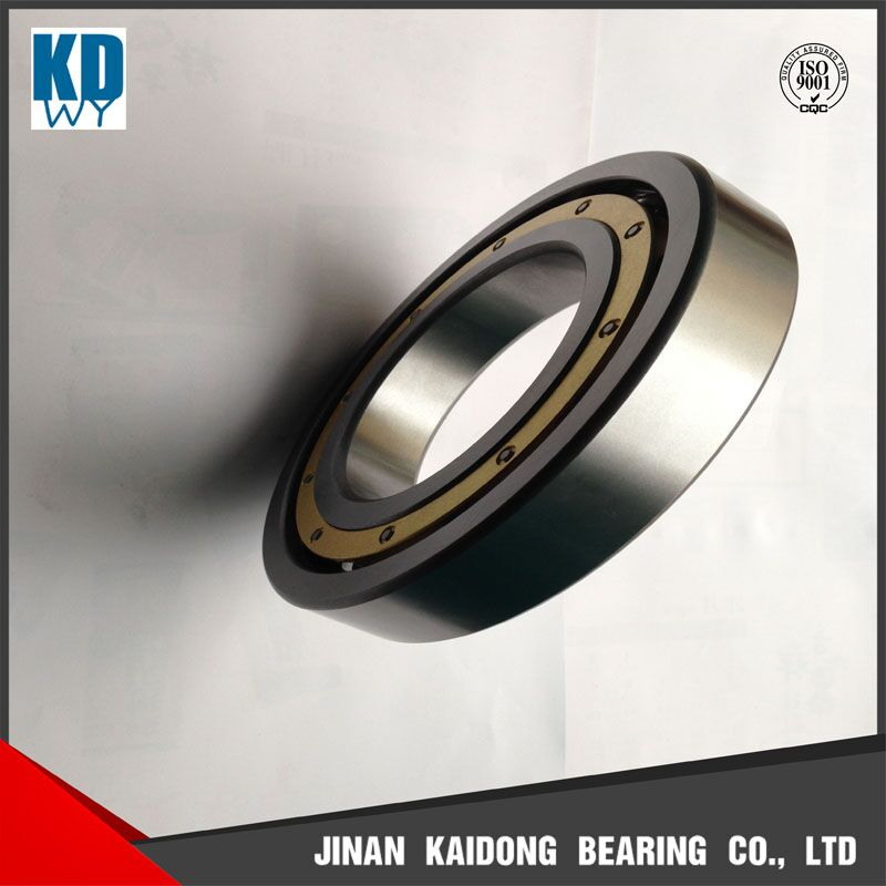 More competitive price nu202 rollerbearing