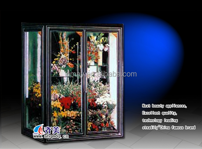 09KG Flower display cooler