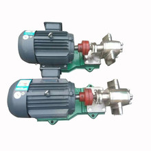 Attractive Lubricants Transport Simple Structure Gear Pump