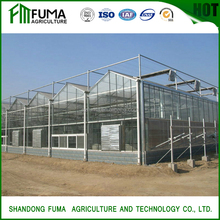 commercial galvanized steel truss glass greenhouse for sale