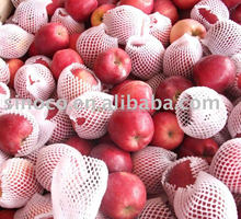 hot market of fresh red delicious apple