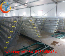 H type or battery quail cages for egg layer quail and broiler quail