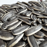 Chinese Sunflower Seeds Market Price Hot