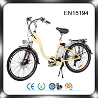 EN 15194 hot sale directly selling 250w bafang mid motor green city bike btn ebike conversion kit