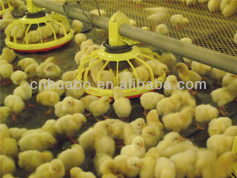 Huabo poultry and agricultural projects