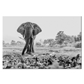 Black and White Elephant Picture Canvas Wall Art Home Wall Decoration Animal Canvas Prints Ready to Hang