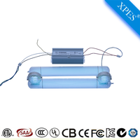 Swimming pool water treatment 300W 185nm 254nm High frequency uv lamp