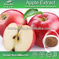 High QualityApple Juice Concentrate--NutraMax Manufacturer