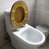 High quality printing resin beige toilet seat