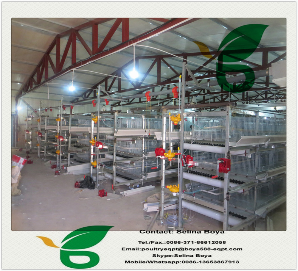 Supplier Sale Battery/Layer Chicken Cage For Poultry Farm House Design