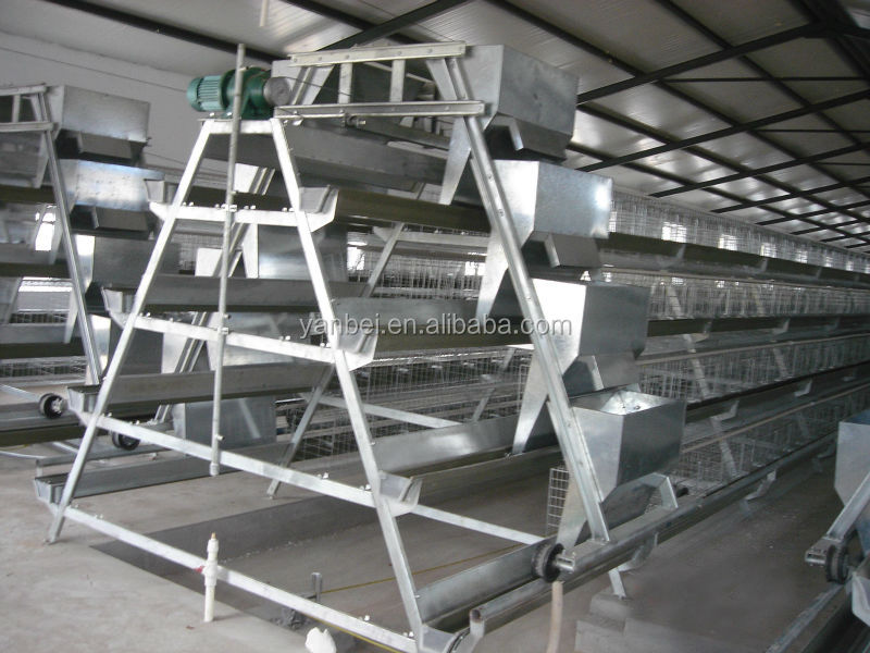 9WCD 4 Tiers A-Type Hot Galvanized Layer Chinese Chicken Coop