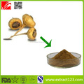 Manufacturer Sales Organic Maca Root Extract Powder
