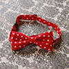 Stylish Colorful Baby Children Bowtie