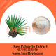 High Quality Nature saw palmetto berry extract for sale