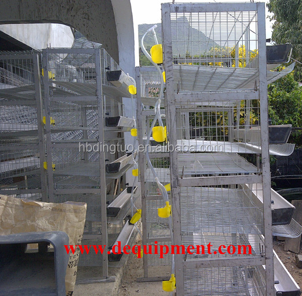 800USD coupon good quality factory price H type 5 tier quail cage