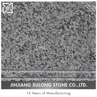 New Arrival Popular Granite Types White Granite Step Stones For Construction Companies