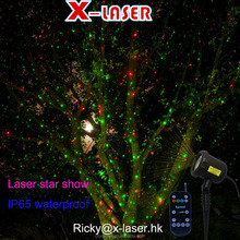 Garden Tree and Wall Decoration Outdoor Laser Spot lights for Holiday Lighting (Green and Red))