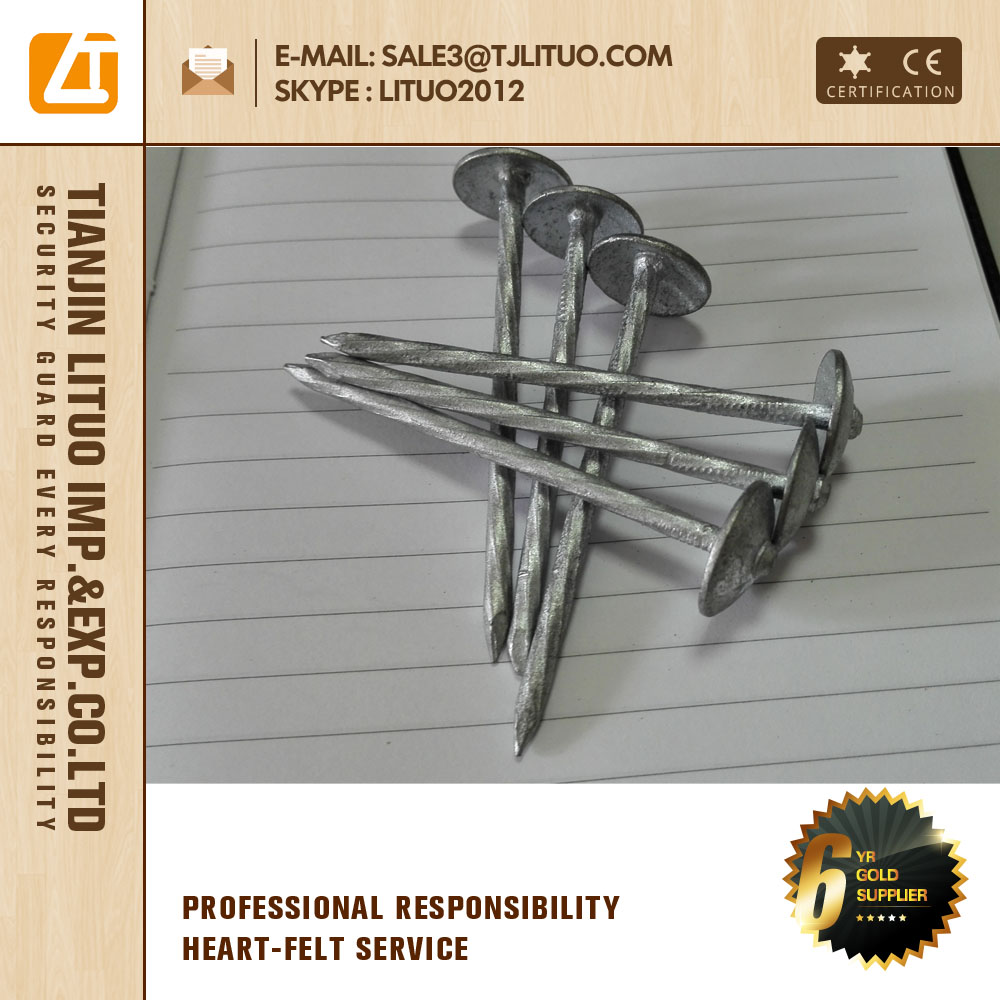plain shank, Umbrella head roofing nails,on sale all types of roofing nails bwg9-bwg12
