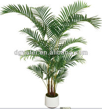 decorative kentia palm tree for hotel decoration