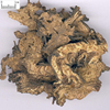 Sheng Ma High Quality Factory Price Black Cohosh Root