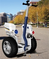 Chic Jazz 2 wheel electric cool sport electric scooter