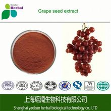 High purity 95% GPC, Water soluble Grape seed extract 95% OPC, Pure Grape seed extract powder