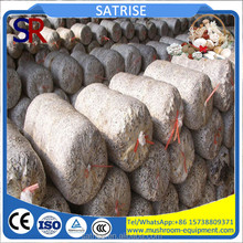 China Factory Provide Best Shiitake Mushroom Logs For Sale