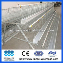 egg Chicken Cages&broiler chicken cage (100%manufacturer)