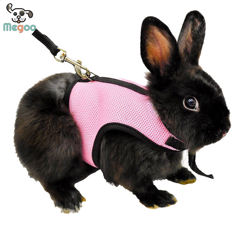 Hamster Rabbit Harness And Leash Set Ferret Guinea Pig Small Animal Pet Walk Lead S/M/L
