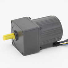 250W Induction motor