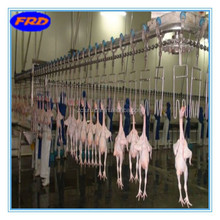 OEM production automatic poultry farm equipments/stainless steel chain