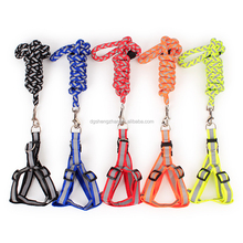 Wholesale PETs Nylon dog rope leash & harness set multi color support