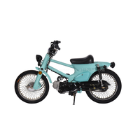 Custom CUB bike 110cc